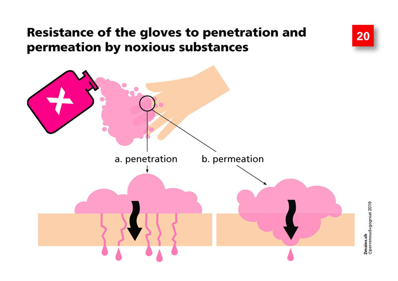 Resistance of the protective gloves to penetration and permeation by noxious substances